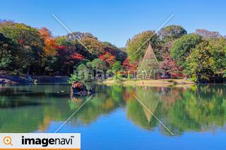 【東京都】秋の都立庭園・特別名勝・六義園