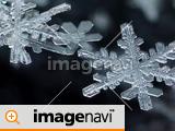 雪の結晶のアップ